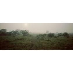 Sergio De Arrola - Fog (Zambia), 2016