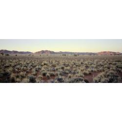 Sergio De Arrola - Namibian desert (Namibia), 2016