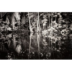 Andrea Santolaya - Lost Paradise